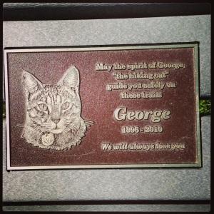 George Cat